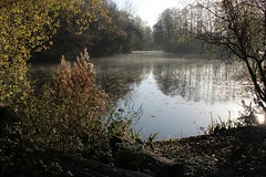 Thetford (A Picture Of Norfolk) Tags: thetford norfolk autumn countryside landscape lake fishing mist