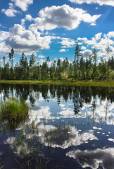 IMG_4383-1 (Andre56154) Tags: forest sky water wolke cloud spiegelung reflexion reflection schweden sweden sverige flus river