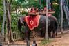 IMG_7360 (Evgeny Gorodetskiy) Tags: phnombakheng angkor temple ruins cambodia asia travel siemreap krongsiemreap siemreapprovince kh
