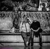 Al sol. Valencia, noviembre 2017. (Jazz Sandoval) Tags: 2017 elfumador españa exterior enlacalle expresión expression agua blancoynegro blanco bn bw contraste calle curiosidad curiosity city ciudad digital day dos dìa fotografíadecalle fotodecalle fotografíacallejera fotosdecalle gente humanos hombre humano human humanfamily humorgráfico humor happy jazzsandoval mujer luz light monocromática monócromo man negro nero portrait people pareja piedra fuente retrato robados robado streetphotography streetphoto sombras sentados
