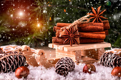 Christmas card with wooden sled with heap of cinnamon (Valeriy Bochkarev) Tags: christmas wooden background cinnamon card sled white spice green happy decoration symbol light holiday space decorative season tree celebration new ornament traditional winter gift border seasonal xmas year shine festive toy december merry berry bauble anise wood over heap old