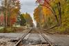 Riding the Rails (Back Road Photography (Kevin W. Jerrell)) Tags: autumn railroad autumncolors fall leecountyva hagan railroadcrossings railroads rails
