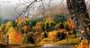 L'automne près du lac d'Annecy (Didier HEROUX) Tags: automne autumn saison novembre paysage landscape hautesavoie annecy colors couleurs lac lake beautiful love didierheroux herouxdidier extérieur outdoor raw leica panasonic balade rando randonnée france french alpesdunord auvergnerhônealpes alpes alpi alps alpen région montagnes mountains multicolore favoris 74 flickr photography nature yellow orange roux jaune red rouge automne2017 forêt bois forest arbre
