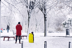 Utrecht met sneeuw. 003 (George Ino) Tags: georgeinohotmailcom georgeino copyright snow sneeuw winter centrum health altstadt griftpark wandeling stroll walk neerslag people mensen pedestrians voetgangers snowboard slee kinderen kind kids children child parents ouders