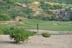 Cabo 2017 492 (bigeagl29) Tags: cabo2017 cabo del sol desert course golf club mexico san jose scenic scenery landscape ocean
