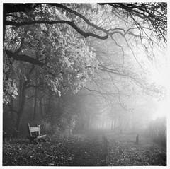 "Foggy morning / Mglisty poranek <a style=""margin-left:10px; font-size:0.8em;"" href=""http://www.flickr.com/photos/157629747@N06/38205322216/"" target=""_blank"">@flickr</a>"