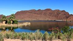 lake4 (jeffcuneo) Tags: parker arizona needles california desertgeology southwestunitedstates southwestgeology wild burros donkeys