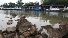 Rocky shore at Changi (wildsingapore) Tags: changi carpark1 landscape rocky shore singapore marine intertidal seashore marinelife nature wildlife underwater wildsingapore