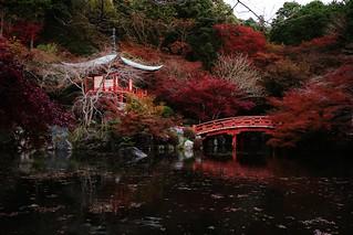 Autumn Tranquility / Kyoto Daigo-ji Temple 京都 醍醐寺