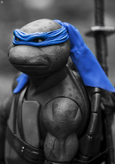 NECA Leonardo - Teenage Mutant Ninja Turtle (jezbags) Tags: neca leonardo teenage mutant ninja turtle toy toys tmnt macro macrophotography macrodreams canon60d canon 60d 100mm closeup blue black white blackwhite