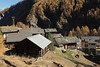 La Gouille (bulbocode909) Tags: valais suisse arolla lagouille valdhérens montagnes nature hameau chalets forêts arbres chevaux automne mélèzes toits vert orange