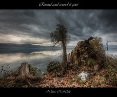 Round and round it goes... (Nikos O'Nick) Tags: nikond810 nikoskotanidis manfrotto055xrpob nikkor1424mm nikon nikkor hdr manfrotto kastoria hellas greece lake clouds water autumn landscape leaves logs fallen trees cloudy misty gloomy round goes nick nikos onick καστοριά ελλάδα νίκοσ κοτανίδησ τοπίο λίμνη φθινόπωρο συννεφιά φύλλα κορμοί νερό d810 498rc2