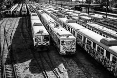 forgotten in plain sight / buried alive (Özgür Gürgey) Tags: 2016 50mm bw d750 haydarpaşa nikon abandoned cars diagonal highcontrast highkey lines rails repetition shadow train istanbul