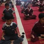 Yoga Week (14)