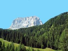 Dolomite Mountain and Trees 056 (saxonfenken) Tags: 6777land 6777 dolomites italy challengeyouwinner friendlychallenges pregamesweep gamewinner
