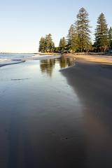 Brooms Head (.Stephen..Brennan.) Tags: beach broomshead da21 pentaxk3 seascape trees newsouthwales australia au