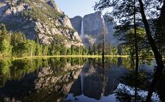 YOSEMITE (AlCapitol) Tags: ysemite nationalpark cascade chutedeau nikon d800 californie reflet reflection waterfall