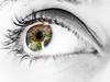 Eye (Joseph.K.) Tags: eye eyes iris closeup olympus macro olympus60mmf28