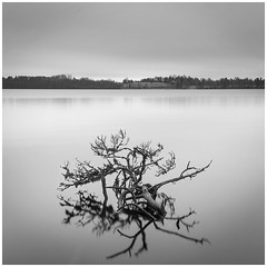 Calm Lake (Igor Grigorjev) Tags: lake calm black white canon nisi 1635 photoshop
