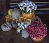 A season for thankfulness (Pejasar) Tags: mums bloom blossoms autumn pumpkins harvesttime logcabin missouri hollister keetercenter entrance falldecor
