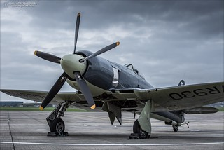 Hawker Sea Fury FB11 - VR930