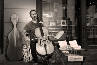 Musician playing the Cello  _2602