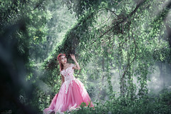 【Dreamland】 (Huỳnh MiNH Trí) Tags: shooting modeling portrait styling lighting beauty professional gorillazs photographer art women dream land bride design color feeling forest ray bokeh cây