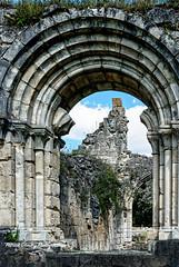 Vauclair Aisne Picardie ( photopade (Nikonist)) Tags: abbayedevauclair abbaye abbey architecture apple affinityphoto aisne arcade arche picardie nikon imac ruines mac moyenage nikond80