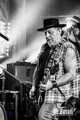 2017_11_24 Bosuil Zuma – Neil Young tribute ZPG_4475-Johan Horst-WEB