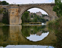 Alcantara Bridge Reflections