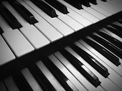 Music Piano Key Piano Musical Instrument Keyboard Instrument Arts Culture And Entertainment Full Frame Close-up Synthesizer No People Backgrounds Indoors  Day (valeriorosati) Tags: music pianokey piano musicalinstrument keyboardinstrument artscultureandentertainment fullframe closeup synthesizer nopeople backgrounds indoors day
