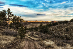 Pale November Twilight (CTfotomagik) Tags: grass bobcat ridge natural area fort collins colorado nature trail hiking landscape sky forest view foothills explore larimer county nikon wide angle 1020mm