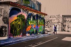 Horses Head Graffiti; Urban Art, Darwin (Shane Bartie) Tags: graffiti austin lane tagging urban art street