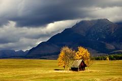 In hug (tatranka7) Tags: autumn landscape colors mountain