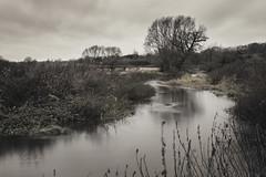 In the bleak wid winter (kerto.co.uk) Tags: river milky slow motion longexposure tripod winter bleak midwinter landscape muted tones trees kerto