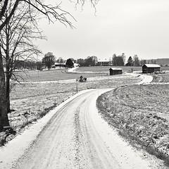 Countryroad (Stefano Rugolo) Tags: stefanorugolo pentax k5 kepcorautowideanglemc28mm128 monochrome countryside countryroad hälsingland sweden barn house tree road landscape snow sky leadingline windingroad