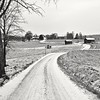 Countryroad (Stefano Rugolo) Tags: stefanorugolo pentax k5 kepcorautowideanglemc28mm128 monochrome countryside countryroad hälsingland sweden barn house tree road landscape snow sky leadingline windingroad