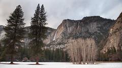 (Nick Kanta) Tags: california clouds color d90 light meadow nationalpark nikon outdoorphotography sky snow tamron1750 trees waterfall winter yosemitefalls yosemitenationalpark yosemitevalley
