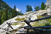 Jackson Hole 1707-1255.jpg (DevonshireMedia) Tags: wyoming jacksonhole travel 2017 grandtetons mountain mountains tetons