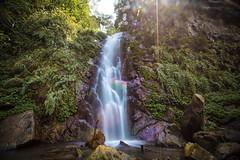 GTJ-2017-1104-20 (goteamjosh) Tags: guyanwaterfall hsinchu taiwan waterfall wufeng landscape nature 五峰 台灣 新竹 谷燕 谷燕瀑布