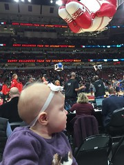 "Dani at Her First Bulls Game • <a style=""font-size:0.8em;"" href=""http://www.flickr.com/photos/109120354@N07/24348619728/"" target=""_blank"">View on Flickr</a>"