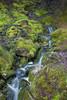 A flow of fresh water (HansPermana) Tags: bergen norway norwegen norge scandinavia skandinavien hafenstadt green water waterfall nature