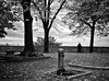 """"""" Autumn """" (pigianca) Tags: italy siena autumn monochrome blackwhite bw biancoenero landscape"""