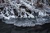 Ice and frost (Helena Normark) Tags: frost morningfrost ice creek winter heimdal trondheim sørtrøndelag norway norge sonyalpha7ii a7ii voigtländer cv5015 nokton5015 nokton50mmf15