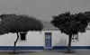 Symétrie (presque) parfaite (hans pohl) Tags: portugal alentejo architecture arbres trees noiretblanccoloré blackandwhite recoloured doors portes fenêtres windows