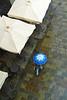 Al mercato (Zaporogo) Tags: mercato ombrello