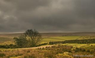 Moody Dartmoor (Explored)