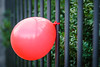 Fenced Ballon - Explore # 215 (**capture the essential**) Tags: 2017 ballon balloon bern berne fence fotowalk mog mogprimoplan1975neo meyeroptikgörlitzprimoplan1975neo schweiz sonya6300 sonyilce6300 switzerland zaun hff fencedfriday fenced friday