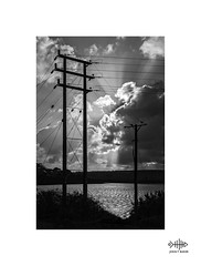 Clash of the Titans (silver/halide) Tags: hayle hayleharbour johnbaker powerlines sunlight clouds carsewpool riverhayle cornwall titans insulators mono monochrome blackandwhite bw poles sunrays