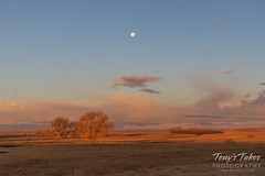 The setting moon above the sunlit plains